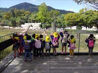 動物園2_R.JPG