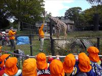 動物園3_R.JPG